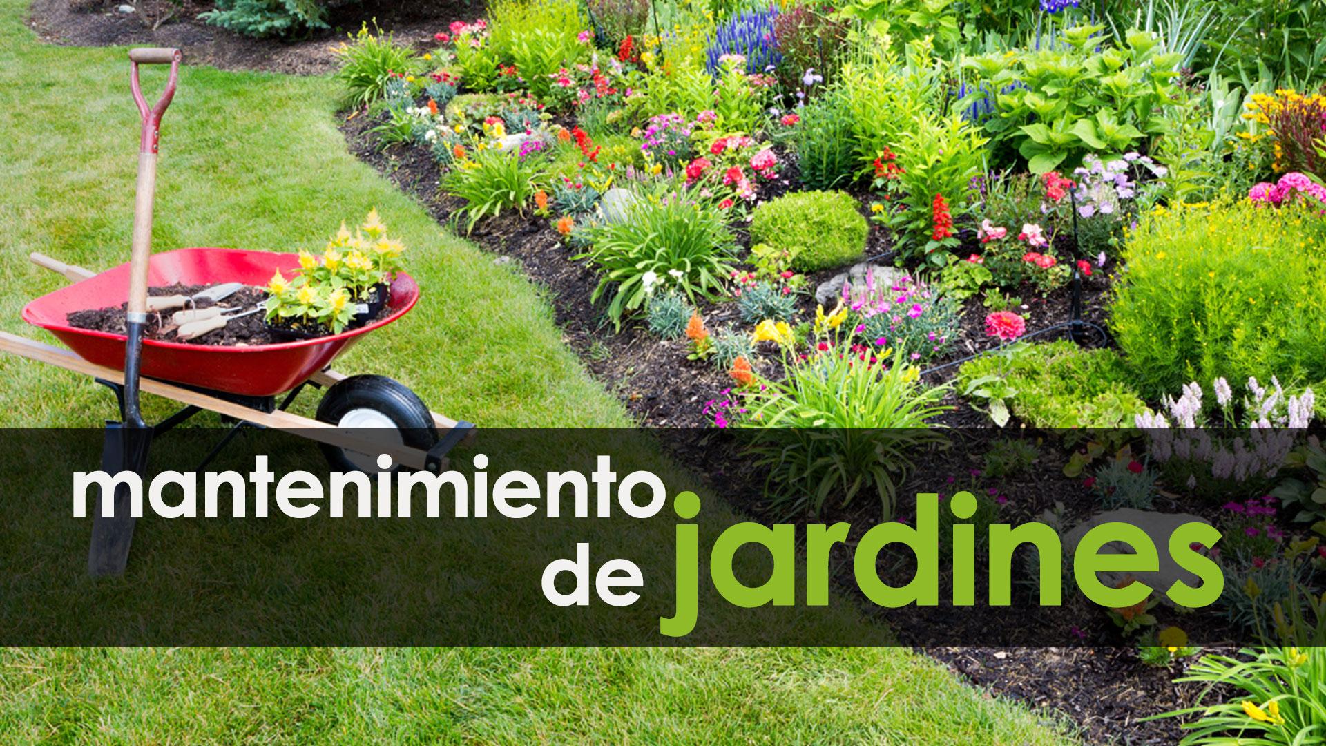 Plan extraordinario por el empleo 2017 2018 5 for Trabajo de mantenimiento de jardines